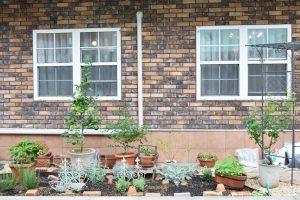 アトリエの庭づくり ~土づくり~