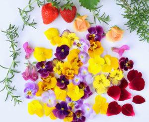 食べられるお花 エディブルフラワーのご紹介