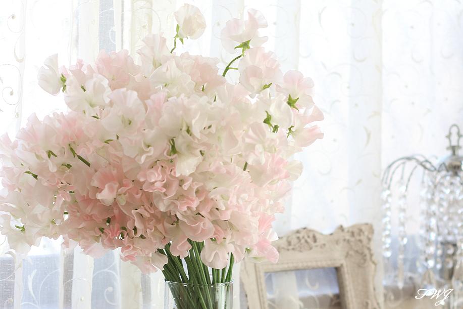 花の香 スイートピー